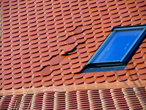Damaged Skylight & Roof Leak Repair in Greater Roanoke