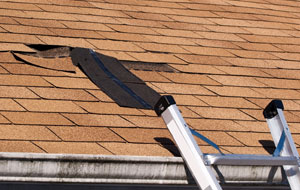 Damaged Shingles